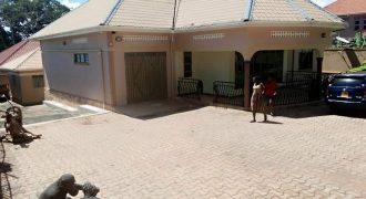House for rent in Buloba